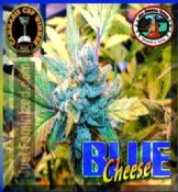 Big Buddha blue cheese Cheap at Just Feminized Seeds UK